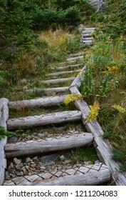 Killick Coast; East Coast Father Troy's Path; East Coast trail near Torbay, Avalon Peninsula, NL Canada