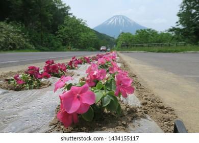 Kimobetsu Town/Japan: June 7 2018:The most beautiful view point for Ezo Fuji or Mt.Yotei.  Photo spot is on route 276 , called Kimobetsu Aikawa