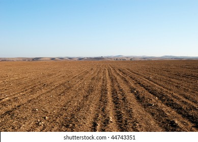 Kind of the empty, dry and stony field in desert Negev, Israel