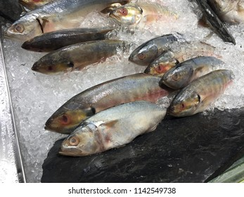 Kind of fish in the super market for sell it is can cook in the restaurant best manu for costomer and catch by fisherman he is gone by small ship.