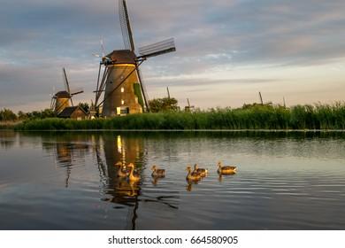 Kinderdijk evening impressions