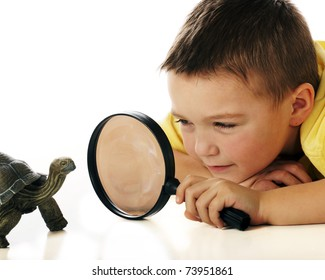 A kindergarten boy studying a turtle through a magnifying glass.