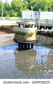 King chair and pump sump in a secondary clarifier emptied for cleaning