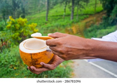 King Coconut, King Coconut Is A Well-Known Source Of Carbohydrates, Vitamin E, Iron, Calcium, Phosphorus And High Dietary Soluble Fibre, Appreciable Amounts Of Protein And Fat