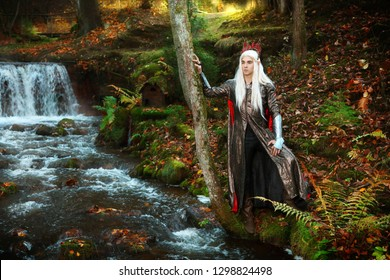 king elf in magic autumn forest fith waterfall
