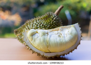 King of fruit in southeast Asia, close-up of durian fruit on nature background. Durian is a unique, sweet fruit flavor.