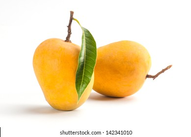King of fruits; Alphonso yellow Mango fruit duo with stems and green leaf isolated on white background