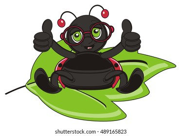 king ladybug in red glasses show gesture class and sitting on the big green leaf