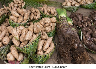 Kingdom of Tonga, Vava'u Islands, Neiafu. Local produce market with display of giant taro (locally known as kape) and yams displayed in woven palm baskets.