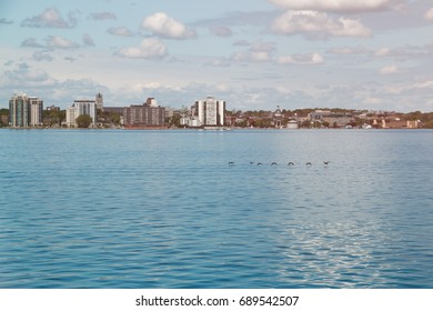 Kingston Ontario Canada as Seen from the St Lawrence River. A row of birds fly in front of Kingston, Ontario Canada on the St Lawrence river on a sunny day.
