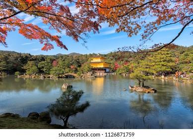Kinkakuji Temple (The Golden Pavilion) in Autumn Color, Kyoto, Japan.