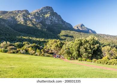 Kirstenbosch botanical gardens, Cape Town South Africa