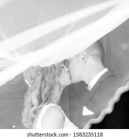 The Kiss. Bride and groom kisses tenderly in the shadow of a flying veil. Close up portrait of sexy stylish wedding couple kissing under white vail. Artistic black and white wedding photo.