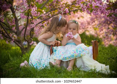 kissing and hugging beloved sisters sitting in small baby bed under the spring pink blossom sakura tree