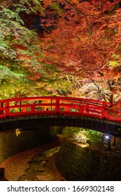 Kitano Tenmangu is a Shinto shrine in Kamigyō-ku, Kyoto, Japan. Autumn leaves are very beautiful.