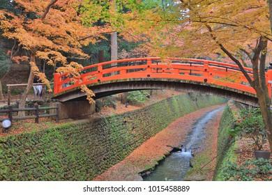 the  Kitano Kitano tenmangu shrine in Kyoto.