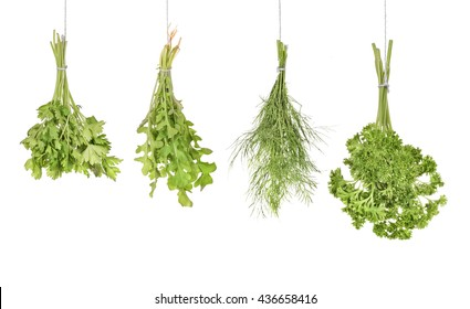 kitchen herbs isolated on white