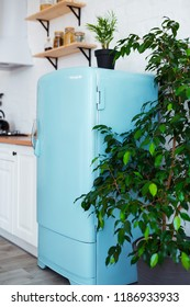 Kitchen interior in white textured colors with blue modern retro fridge and rustic brick wall. Vertical still-life photo