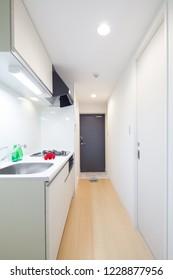 kitchen in mansion room