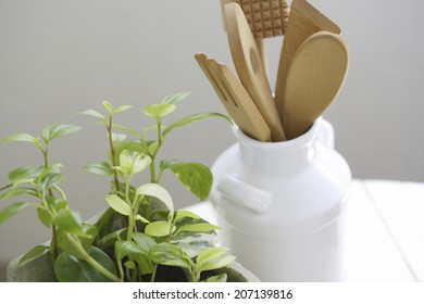 Kitchen Miscellaneous Goods And The Plant