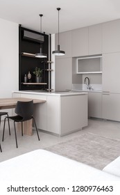 Kitchen in a modern style with light walls and a gray floor with a carpet. There is a wooden table, black chairs, sofa, sink, lockers, shelves with plant and vase, cooking surface, lamps, conditioner.