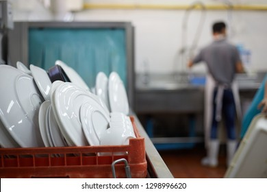 Kitchen porter cleaning white plates in sink in professional kitchen. dish washer