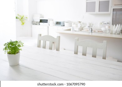 Kitchen table with herb pot plants