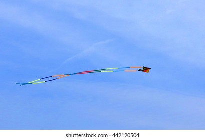 Kite in the Air Flying