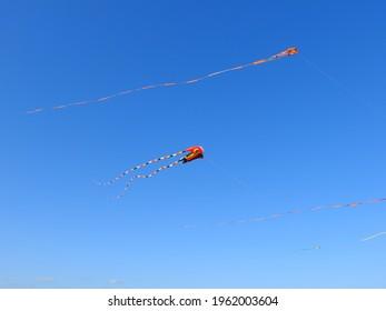 Kite blue sky summer kolor - Shutterstock ID 1962003604
