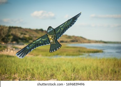 kite flying against the background of a pond