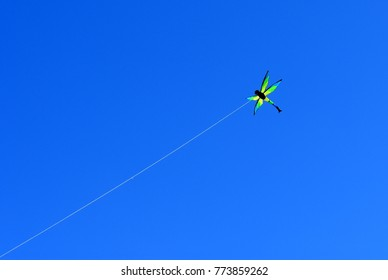 Kite shaped as a dragonfly