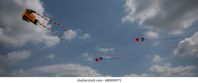 Kites flying on a clear day over Belle Isle, Detroit Michigan