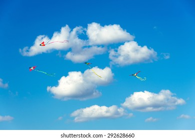 Kites flying in the sky, fun and exciting for children. Concept of dreaming or active summer holiday
