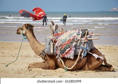 kitesurfing, kiteboarding spot and activities in Essaouira morocco Atlantic Ocean