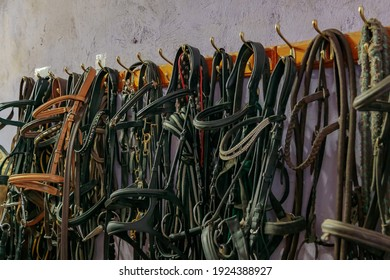 Kits of leather bridles and bats hang on the walls of the stable.