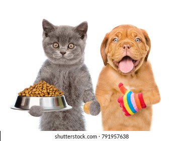 kitten holding bowl of dry dog food and puppy showing thumbs up. isolated on white background