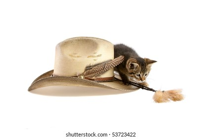Kitten playing with tassel on cowboy hat