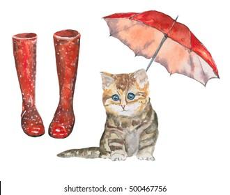 Kitten and the rain/ Watercolor illustration.