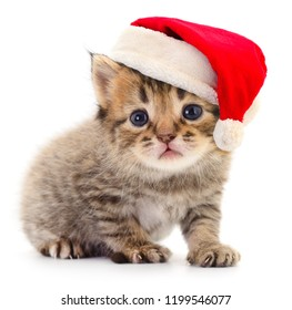 Kitten in a red Santa Claus hat  isolated on white.