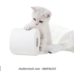 The kitten rolls a roll of toilet paper. Isolated on white background