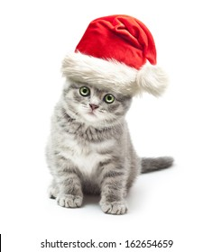 Kitten in Santa Claus xmas red hat on white background.
