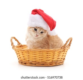 Kitten in a Santa hat and in a basket on a white background.