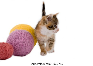 kitten and some ball of yarns