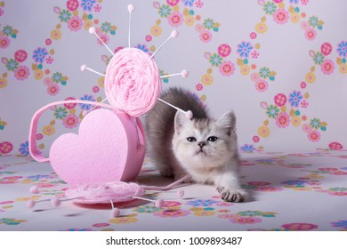 The kitten stretches next to the pink heart on the background of the Wallpaper