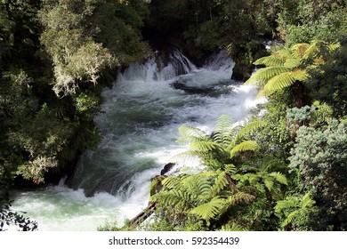 Kiwi Falls, New Zealand