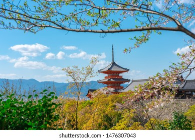 Kiyomizu-dera or formally Otowa-san Kiyomizu dera on spring season at Higashiyama. The temple was registered as a UNESCO world heritage site, landmark of Kyoto, Japan.
