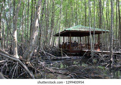 Klaeng, Thailand - January 6th, 2019: A group of tourists sit in the shade of a hut in Tung Prong Thong Nature Reserve, a protected mangrove forest in Klaeng district, eastern Thailand.