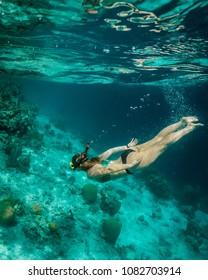 Klein Bonaire, Bonaire/Caribbean - 04/09/2018: Snorkelling a reef drop off in Bonaire
