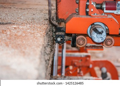Bos Images, Stock Photos & Vectors | Shutterstock