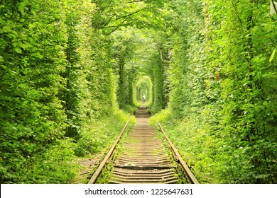 Klevan, Ukraine, 2018: Tunnel of Love in the northern Ukraine in summer, side railway track is a beautiful and magic place surrounded by trees visited by lovers